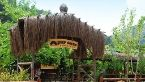Olympos_Deep_Green_Bungalows-Kemer-Exterior_view-464815.jpg