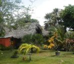 Badezimmer PALMENTO GROVE CULTURAL & FISHING LODGE