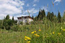 Waldhotel am Notschrei Todtnau/Todtnauberg