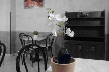 Orchidea Turin