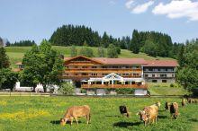 Sonnenbichl am Rotfischbach