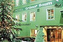 Grüner Baum Brixen