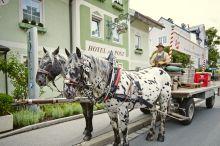 Zur Post Das Grüne Hotel Salcburk