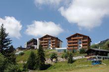 Alpenrose Riederalp