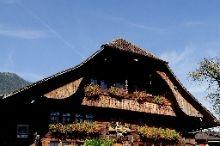 Hirschen Interlaken