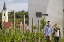 Loisium Wine & Spa Resort Langenlois Langenlois