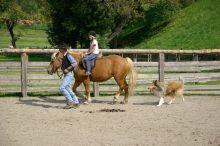 Stroblhof Wellness & Sport