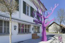 Hotel Bad Kyburg Soletta
