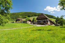 Grüner Baum Gutach im Breisgau