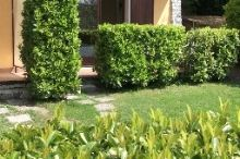 Villa Girasole Bed & Breakfast Garda