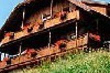 Bauernhof Wanderreithof