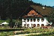 Bauernhof Seppenbauer Fuschl am See