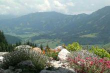 Panoramablick Schneerose Berghotel Regione montuosa di Grimming