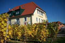 Weinquadrat Weißenkirchen in der Wachau