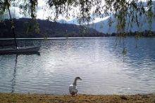 La Piroga Calceranica al Lago