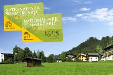 Apparthotel Alpen Chalet Neukirchen