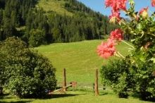 Alpenland Tannheim