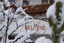 Belmont Fiss