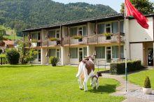 Alpine-Inn by Jungfrau Hotel Wilderswil