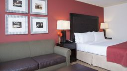 Room Holiday Inn CHICAGO WEST-ITASCA
