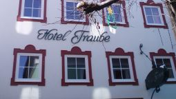 Hotel Traube - Zell am See