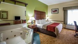 Room Comfort Inn South Jacksonville
