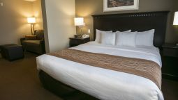 Room Comfort Suites Austin Airport