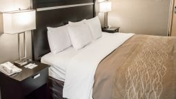 Room Comfort Inn & Suites Airport - Wolf Road