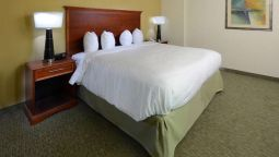 Room Hampton Inn Raleigh-Town of Wake Forest