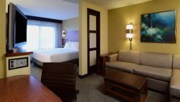 Kamers Hyatt Place Dallas Las Colinas