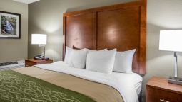 Room Comfort Inn & Suites at Dollywood Lane