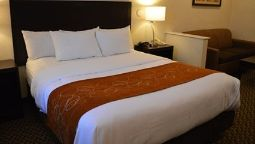 Room Holiday Inn Express & Suites DAVIS - UNIVERSITY AREA