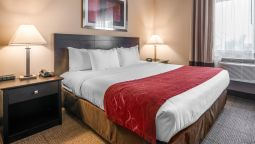 Room Comfort Suites Highlands Ranch Denver Tech Center Area