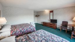 Room Econo Lodge Hornell