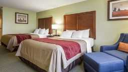 Room Comfort Inn & Suites Black River Falls