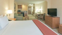 Room Holiday Inn Express Hotel & Suites BISHOP