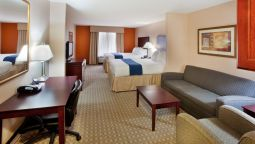 Kamers Holiday Inn Express & Suites MCDONOUGH