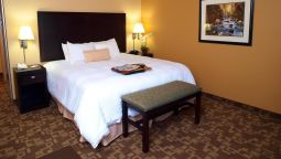Room Hampton Inn - Suites-Knoxville-North I-75