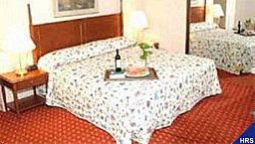 Kamers Ramada Plaza Hotel JFK International Airport
