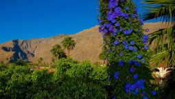 BW PLUS LAS BRISAS HOTEL - Palm Springs (California)