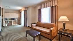 Room Holiday Inn Express & Suites ROSEVILLE - GALLERIA AREA