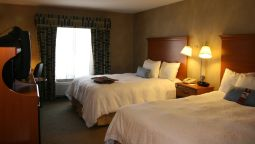 Room Hampton Inn Detroit-Novi at 14 Mile Road