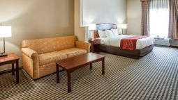 Room Comfort Inn & Suites Carneys Point