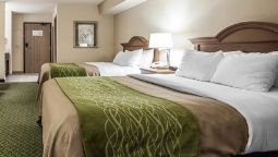 Room Comfort Inn & Suites St. Louis - Chesterfield