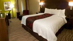 Kamers Fairfield Inn & Suites Dallas DFW Airport South/Irving
