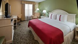 Kamers Holiday Inn CHANTILLY-DULLES EXPO (ARPT)