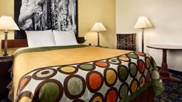 Room SUPER 8 CARLSBAD