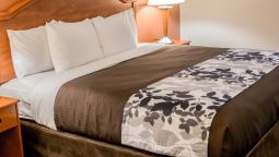 Room Sleep Inn & Suites Stafford - Sugarland
