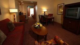 Suite Embassy Suites by Hilton Dallas Frisco Convention Ctr - Spa