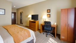 Room Comfort Inn & Suites Bellevue